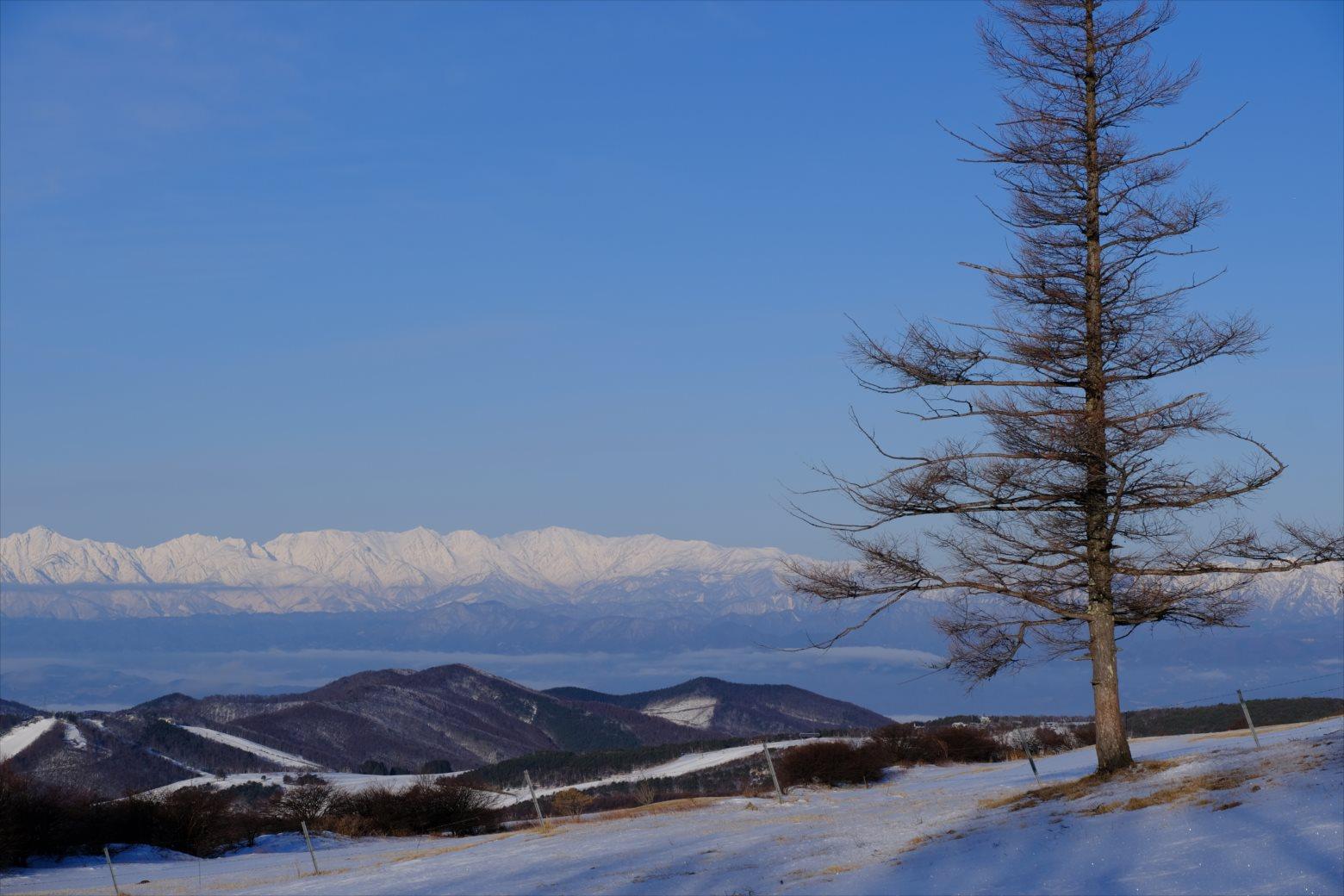 【厳冬期・雪山登山】四阿山 (19)