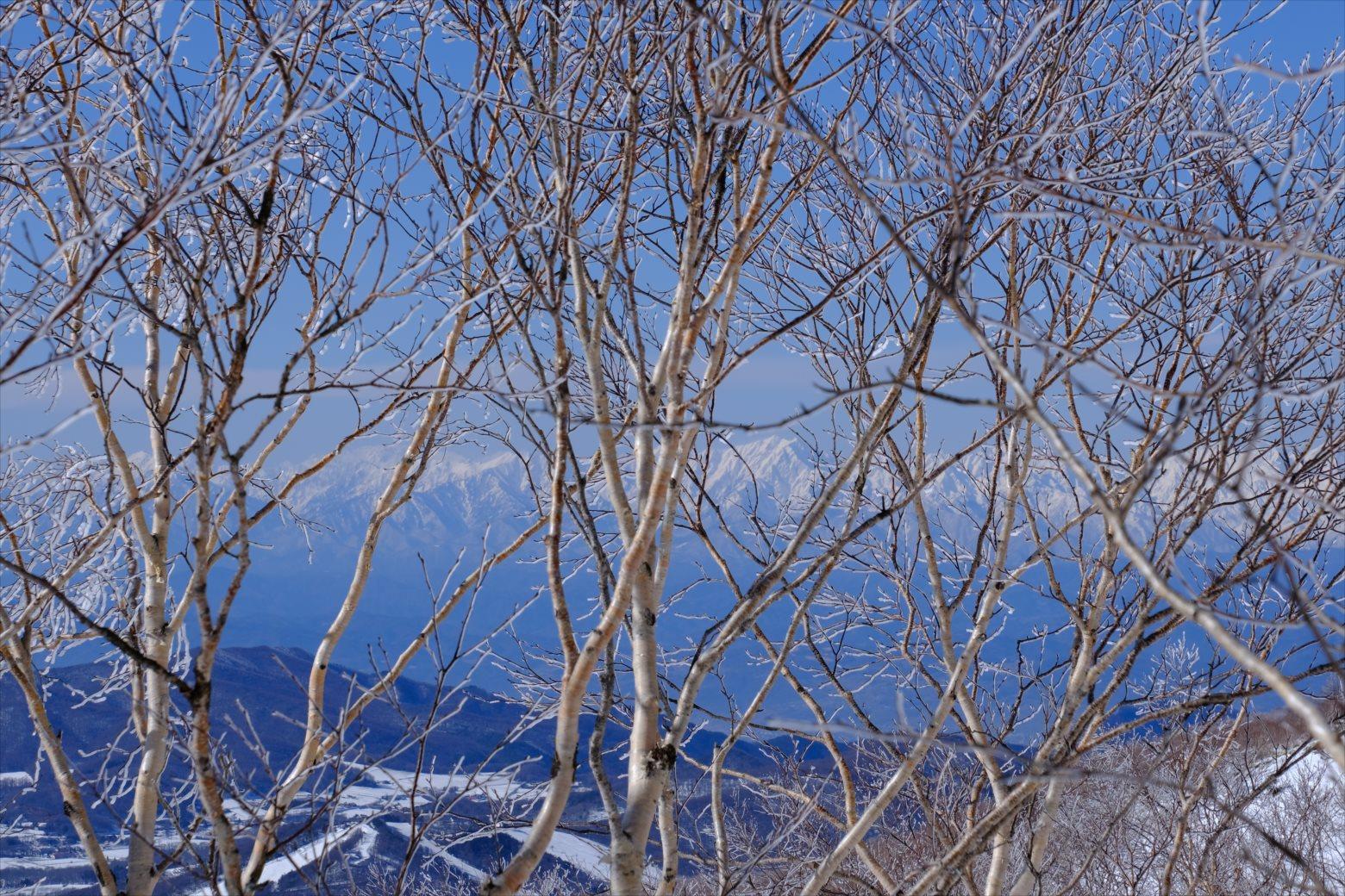 【厳冬期・雪山登山】四阿山 (55)