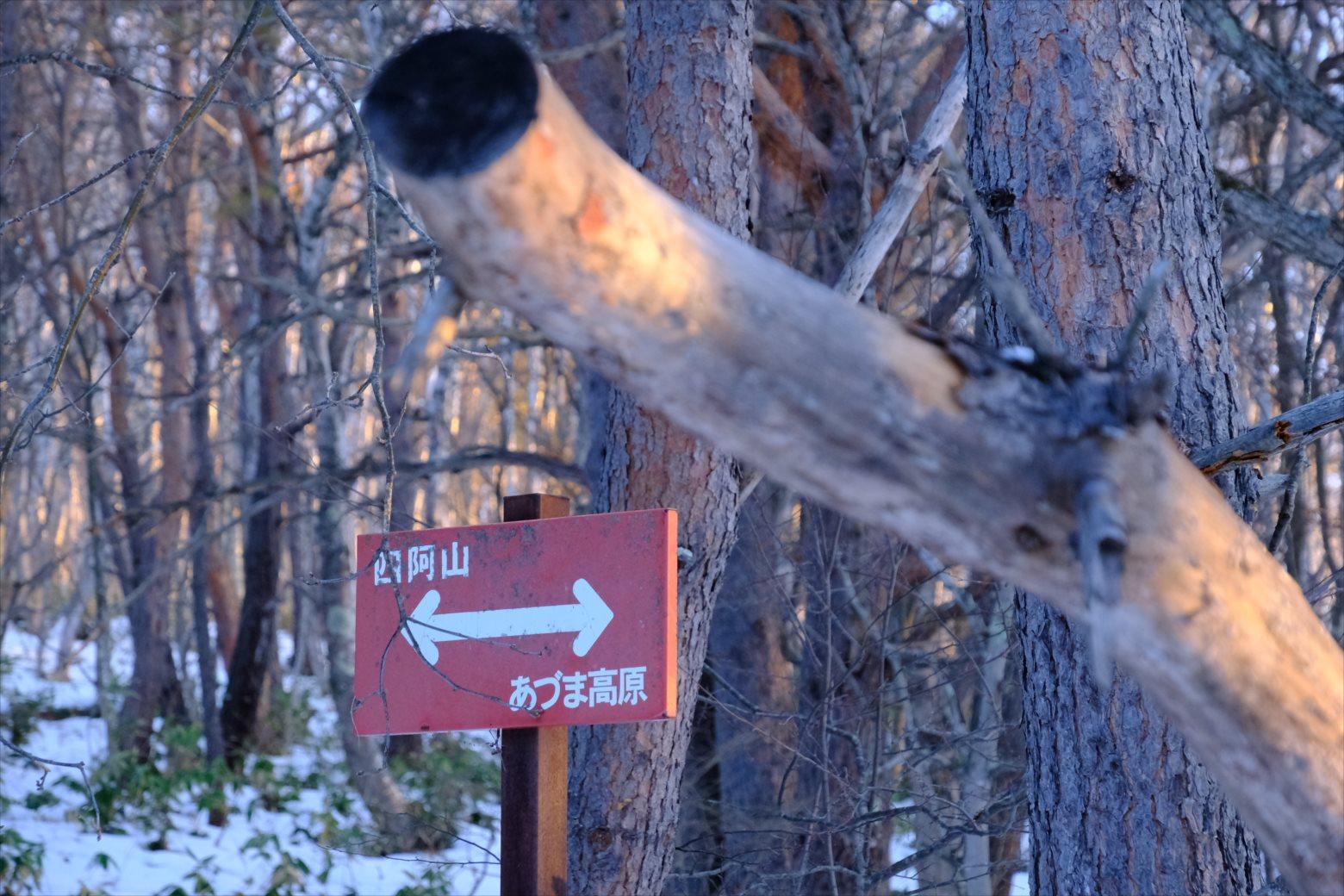 【厳冬期・雪山登山】四阿山 (7)