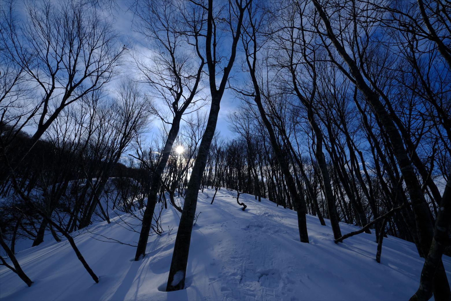 【厳冬期・雪山登山】守門岳 (16)