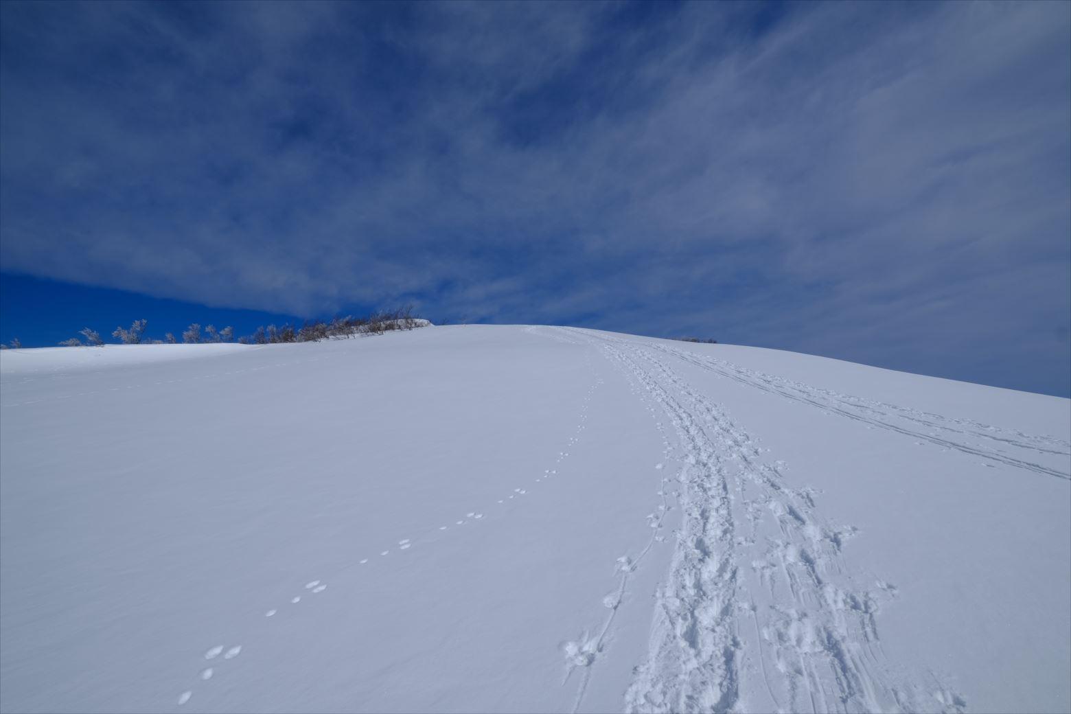 【厳冬期・雪山登山】守門岳 (32)