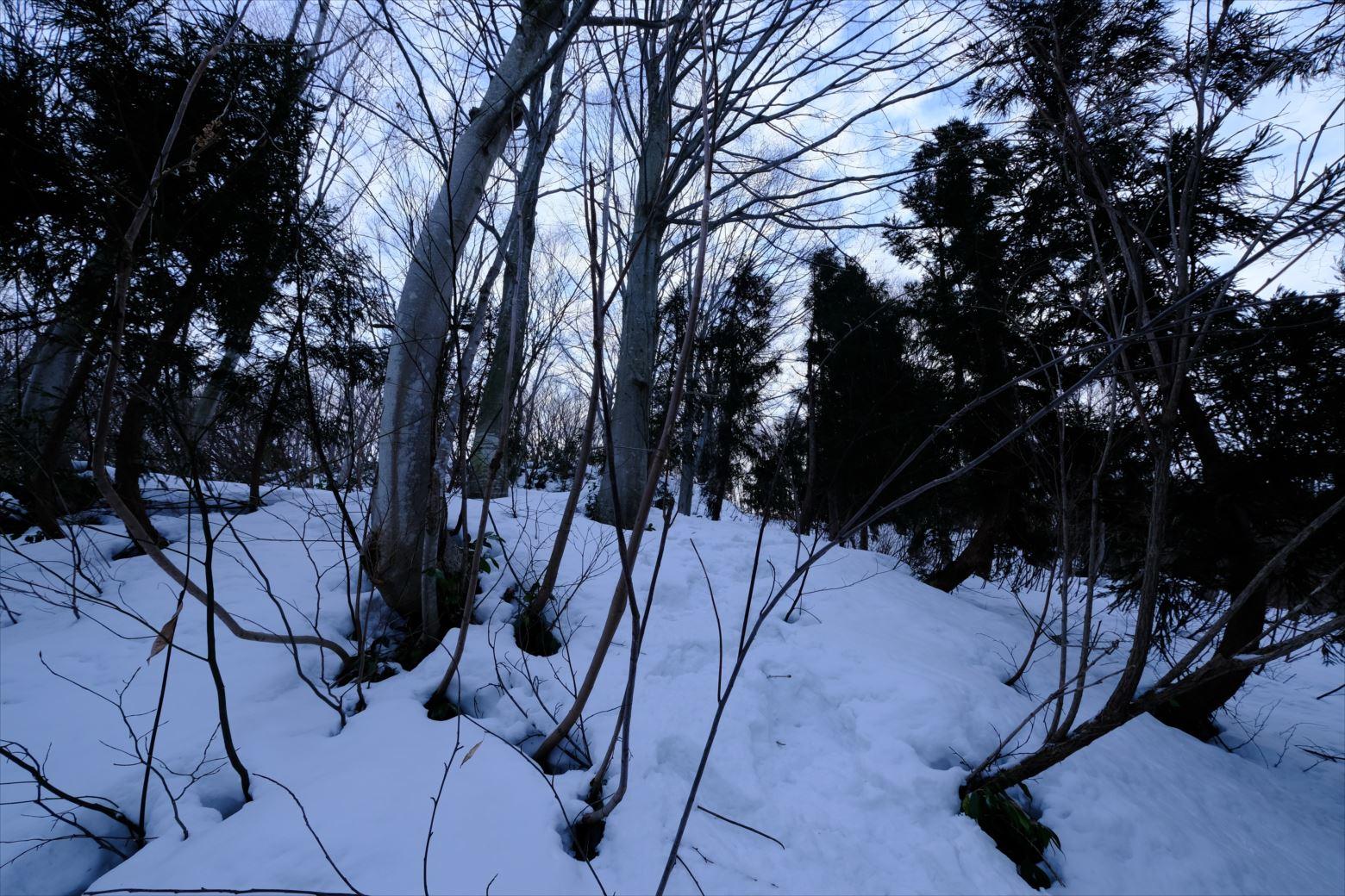 【厳冬期・雪山登山】守門岳 (7)