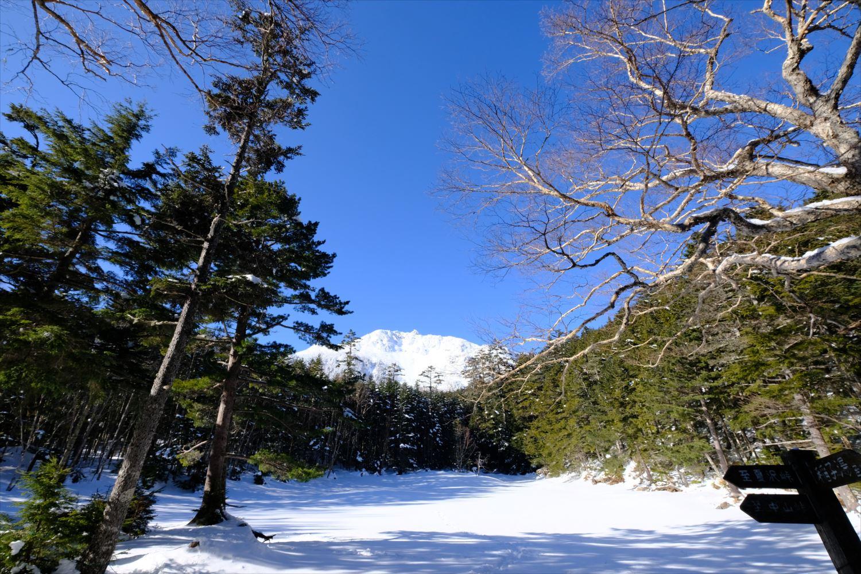 【厳冬期・雪山登山】硫黄岳・天狗岳 (10)