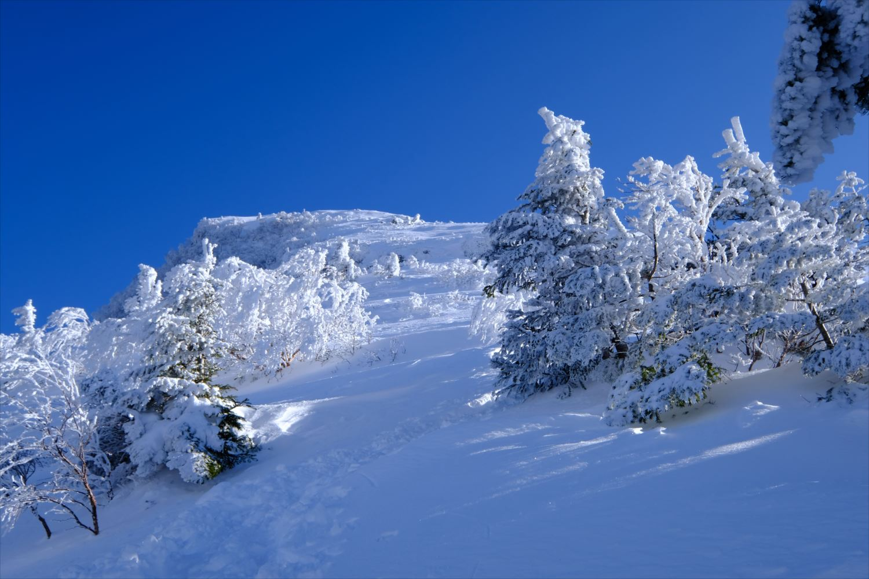 【厳冬期・雪山登山】硫黄岳・天狗岳 (34)