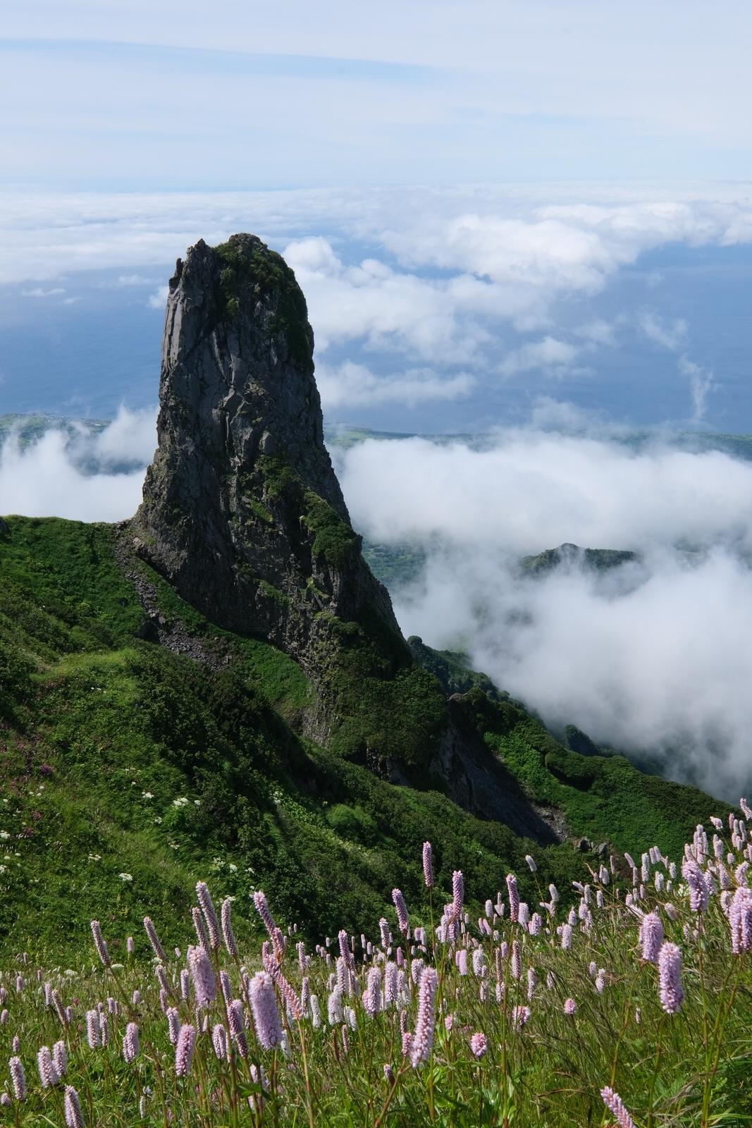 【夏山登山】利尻山~日本最北端の百名山~