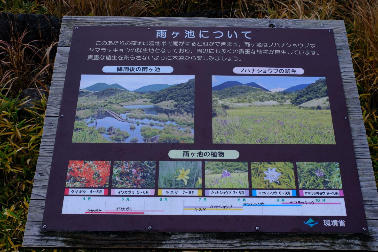 【紅葉登山】くじゅう連山(大船山) (10)