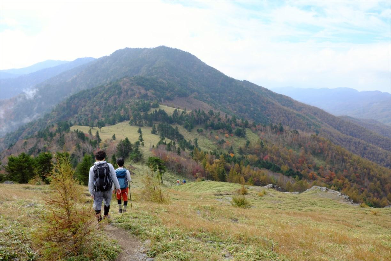 【紅葉登山】小金沢連嶺~気持ちのいい標高2,000mの草原縦走路~