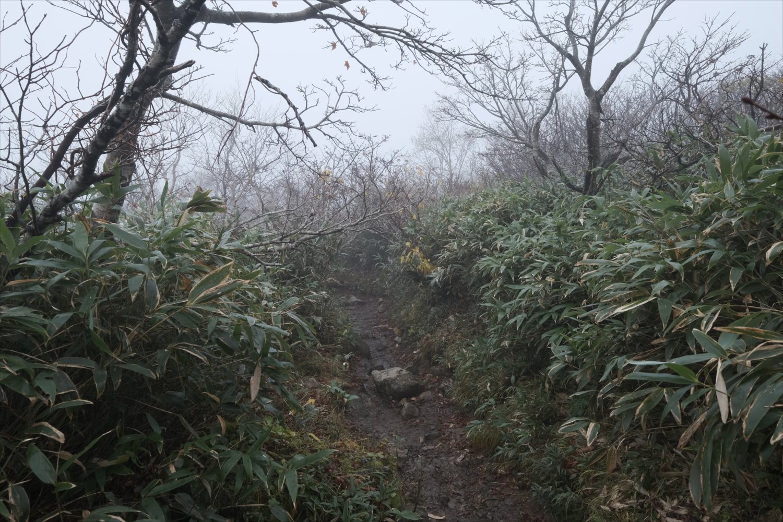 【紅葉登山】磐梯山 (36)