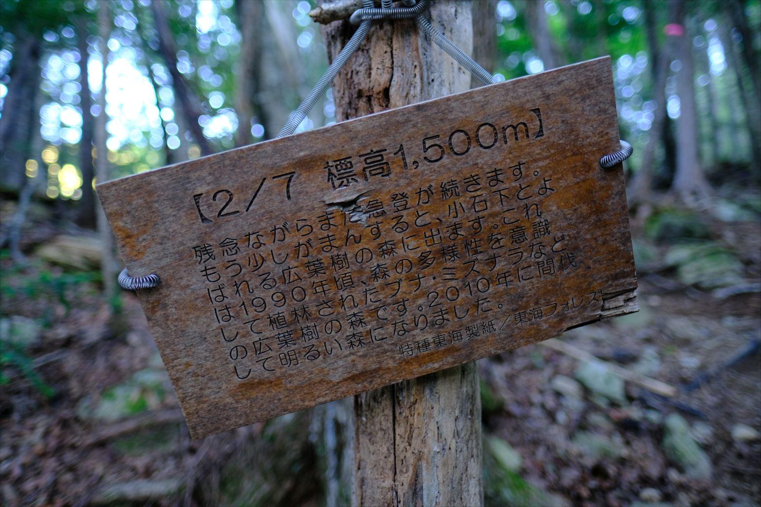 【秋山登山】赤石岳・荒川三山 (163)