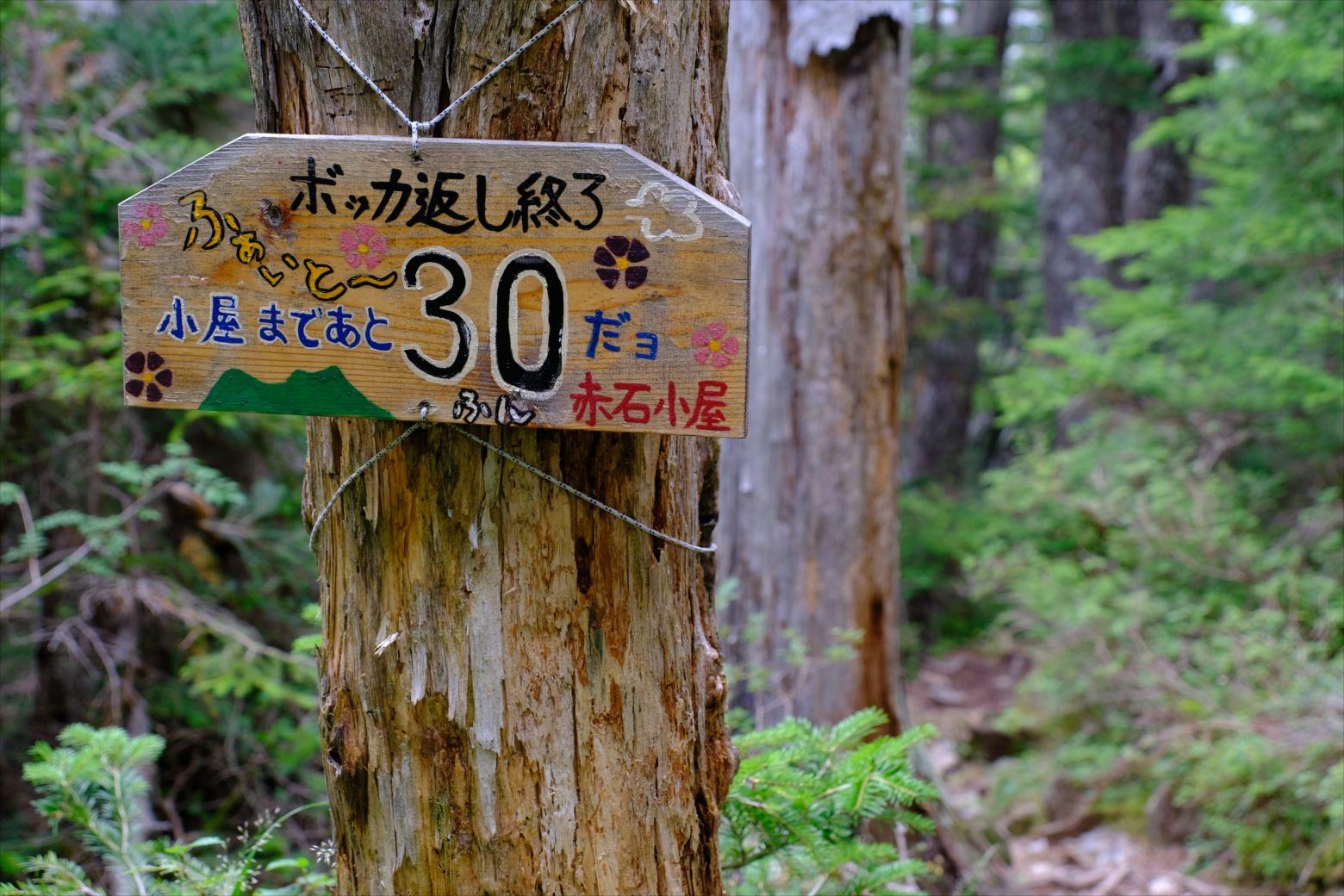 【秋山登山】赤石岳・荒川三山 (22)