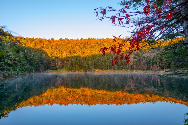 【秋山登山】北八ヶ岳縦走~数多の池とピークを辿る旅~