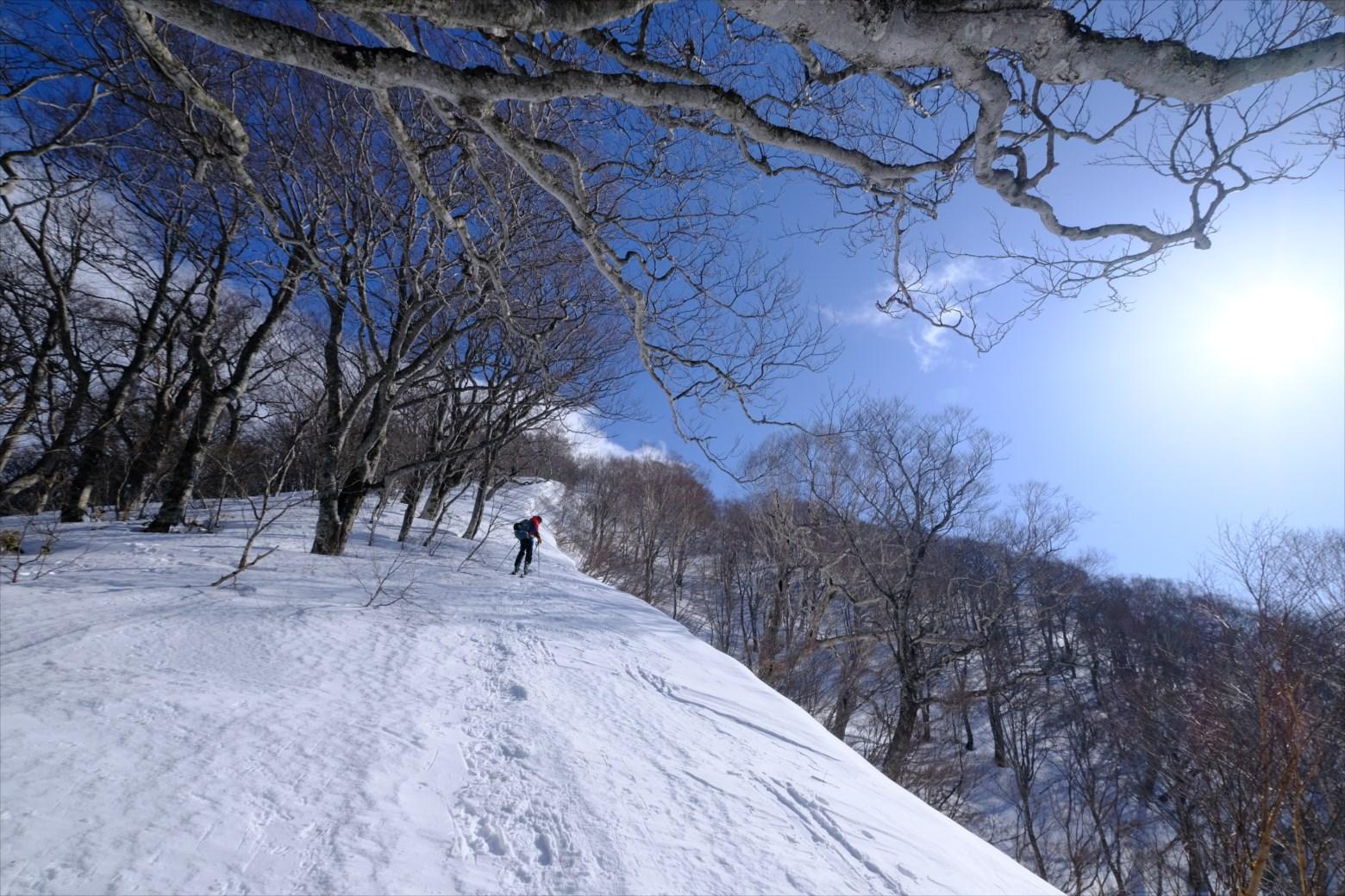 【厳冬期・雪山登山】仙ノ倉山 (10)