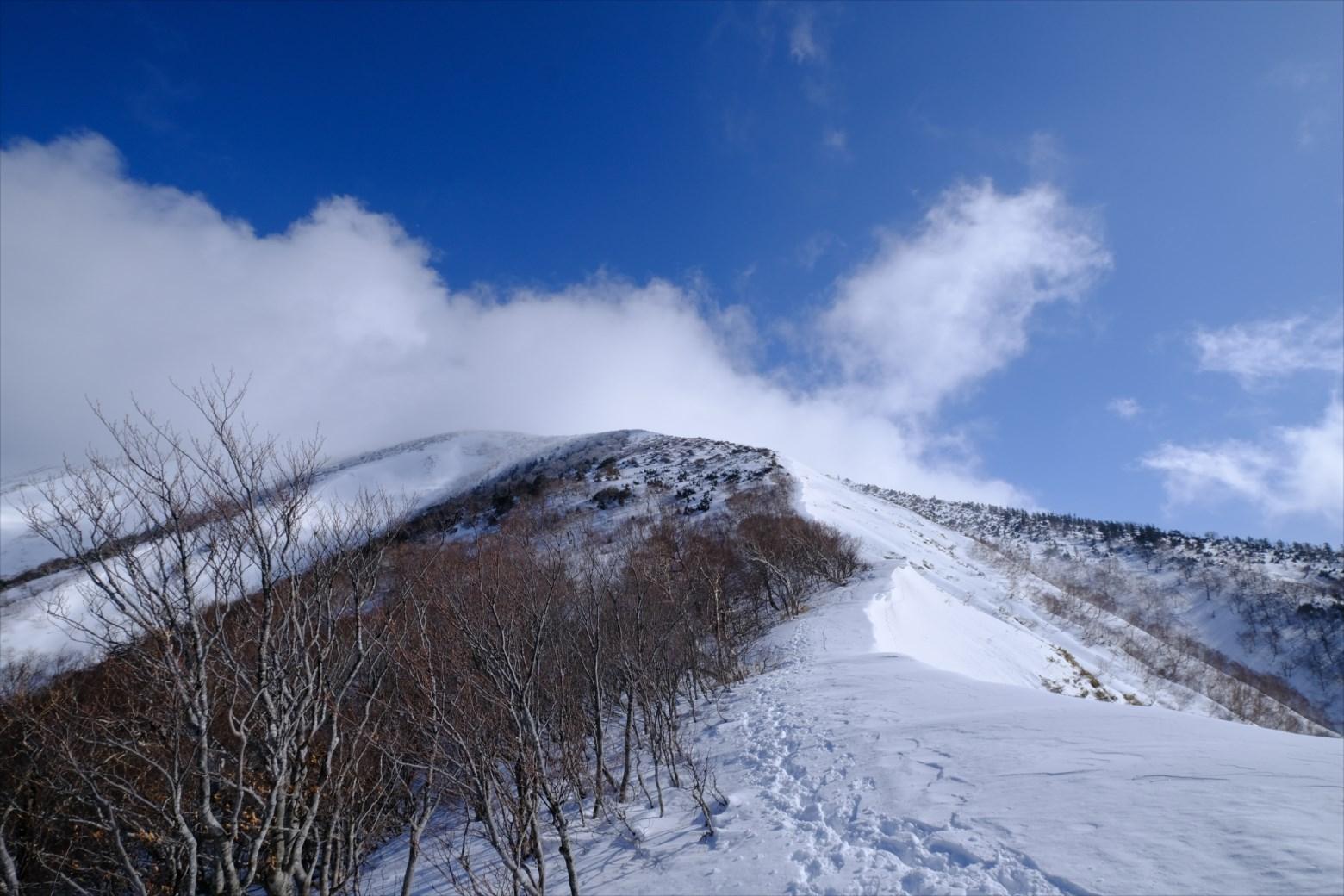 【厳冬期・雪山登山】仙ノ倉山 (12)