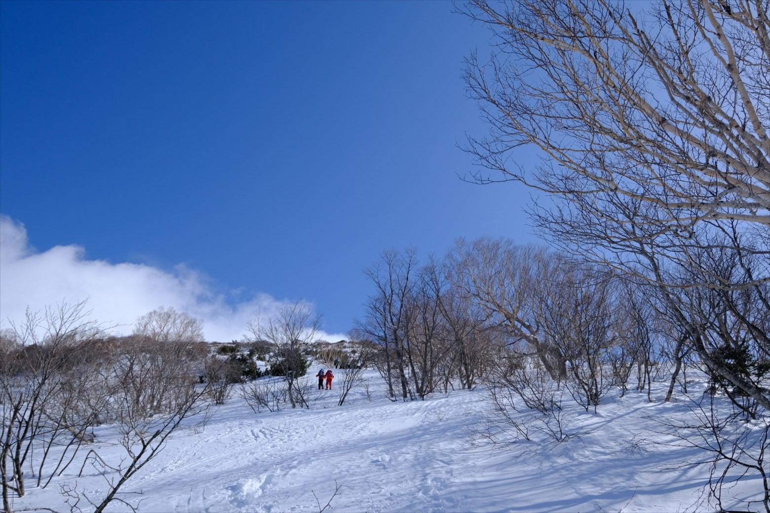 【厳冬期・雪山登山】仙ノ倉山 (13)