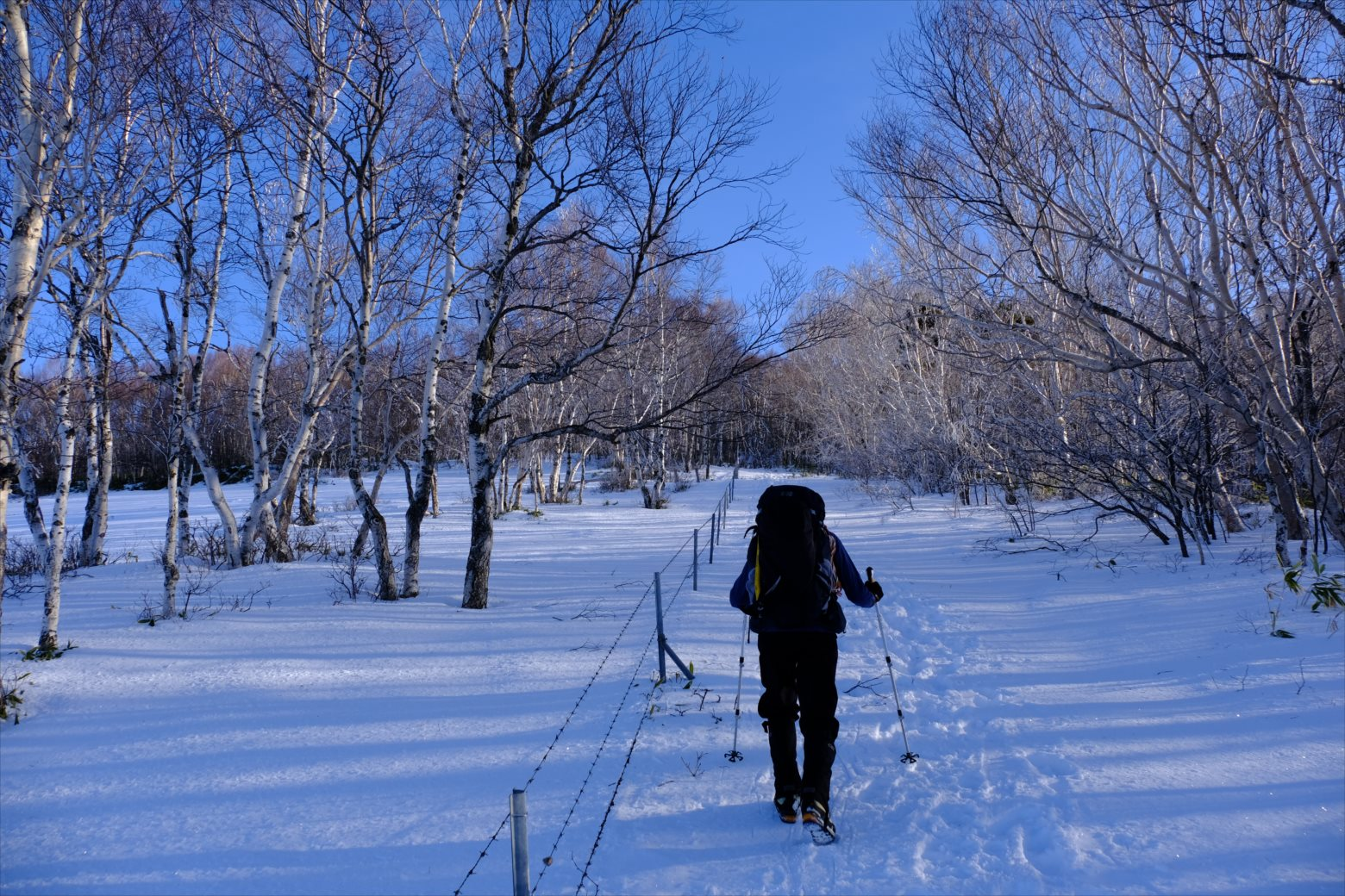 【厳冬期・雪山登山】四阿山 (22)