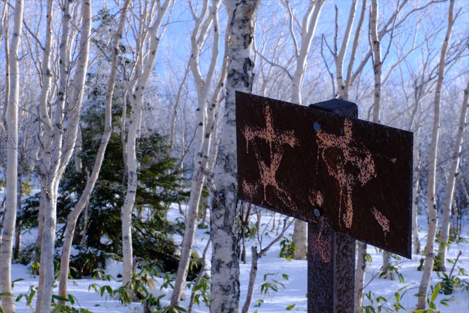 【厳冬期・雪山登山】四阿山 (24)