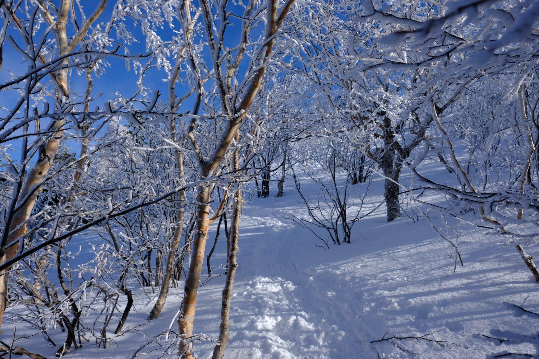 【厳冬期・雪山登山】四阿山 (26)