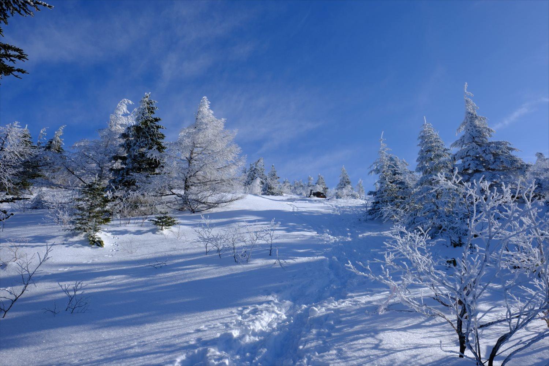 【厳冬期・雪山登山】四阿山 (27)