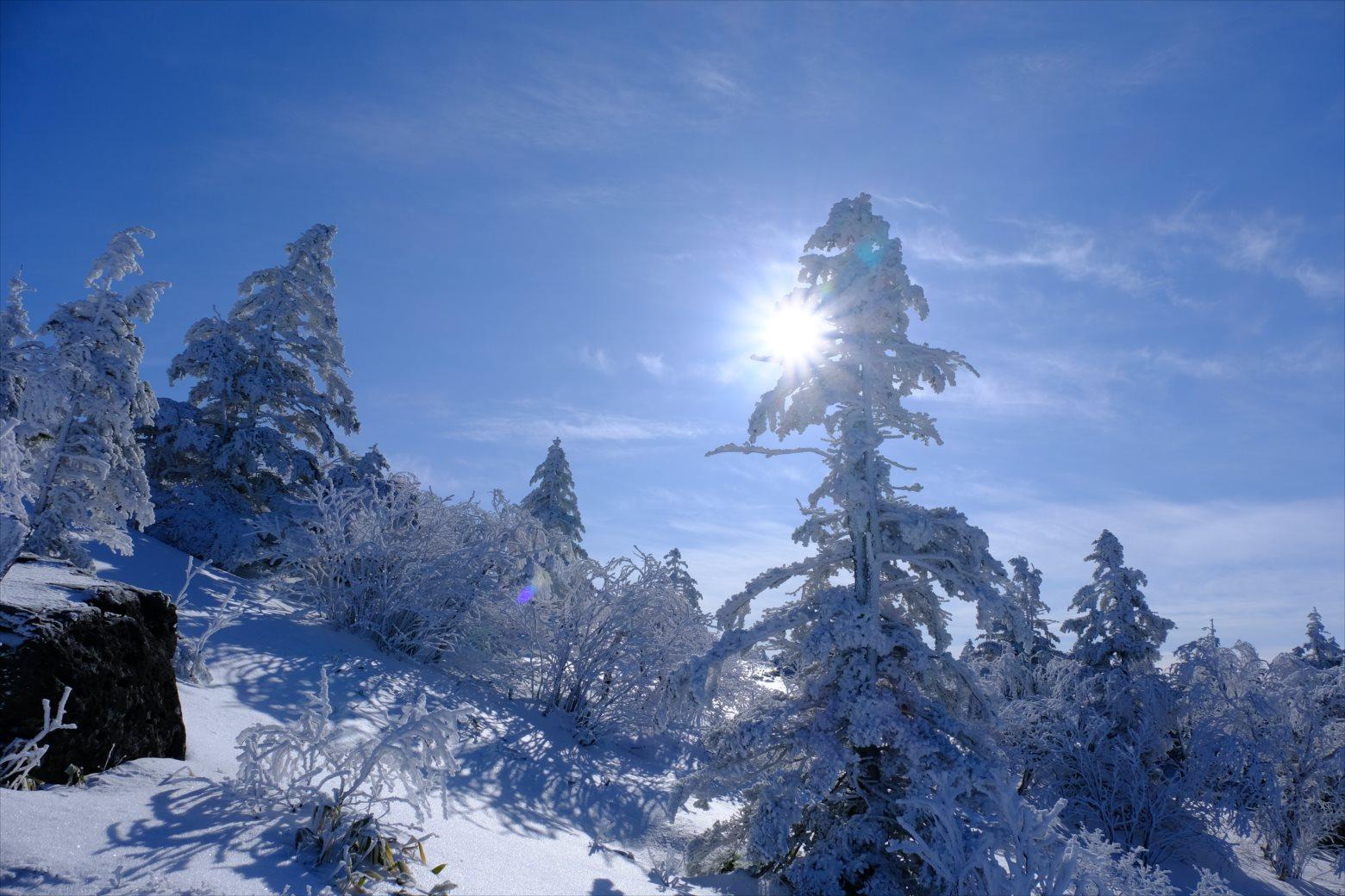 【厳冬期・雪山登山】四阿山 (28)