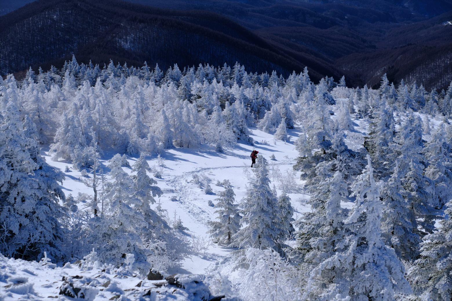 【厳冬期・雪山登山】四阿山 (34)