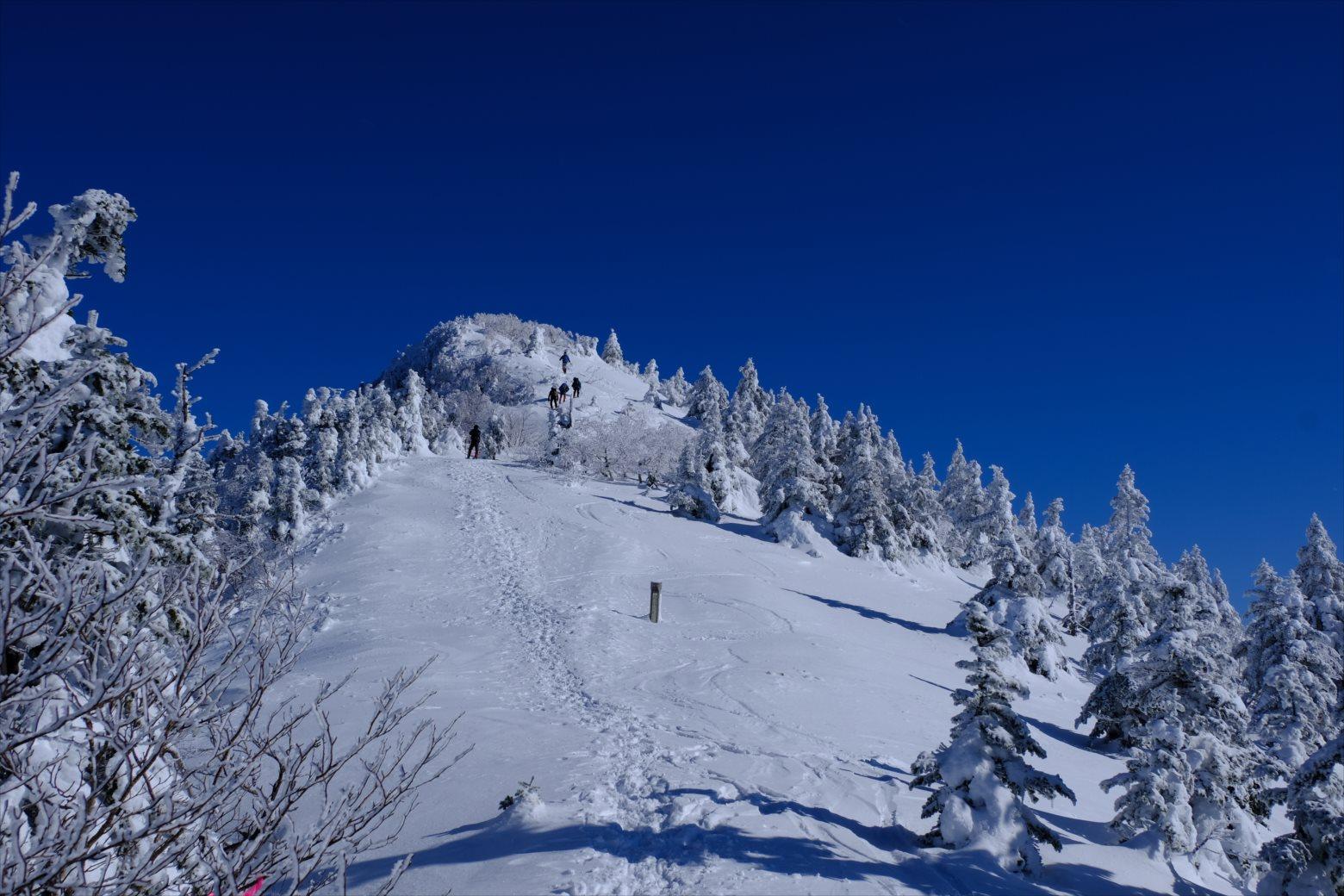 【厳冬期・雪山登山】四阿山 (42)