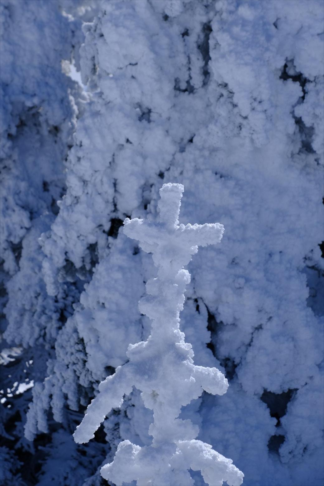 【厳冬期・雪山登山】四阿山 (53)