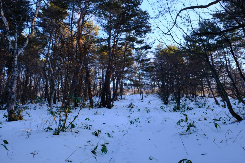【厳冬期・雪山登山】四阿山 (9)