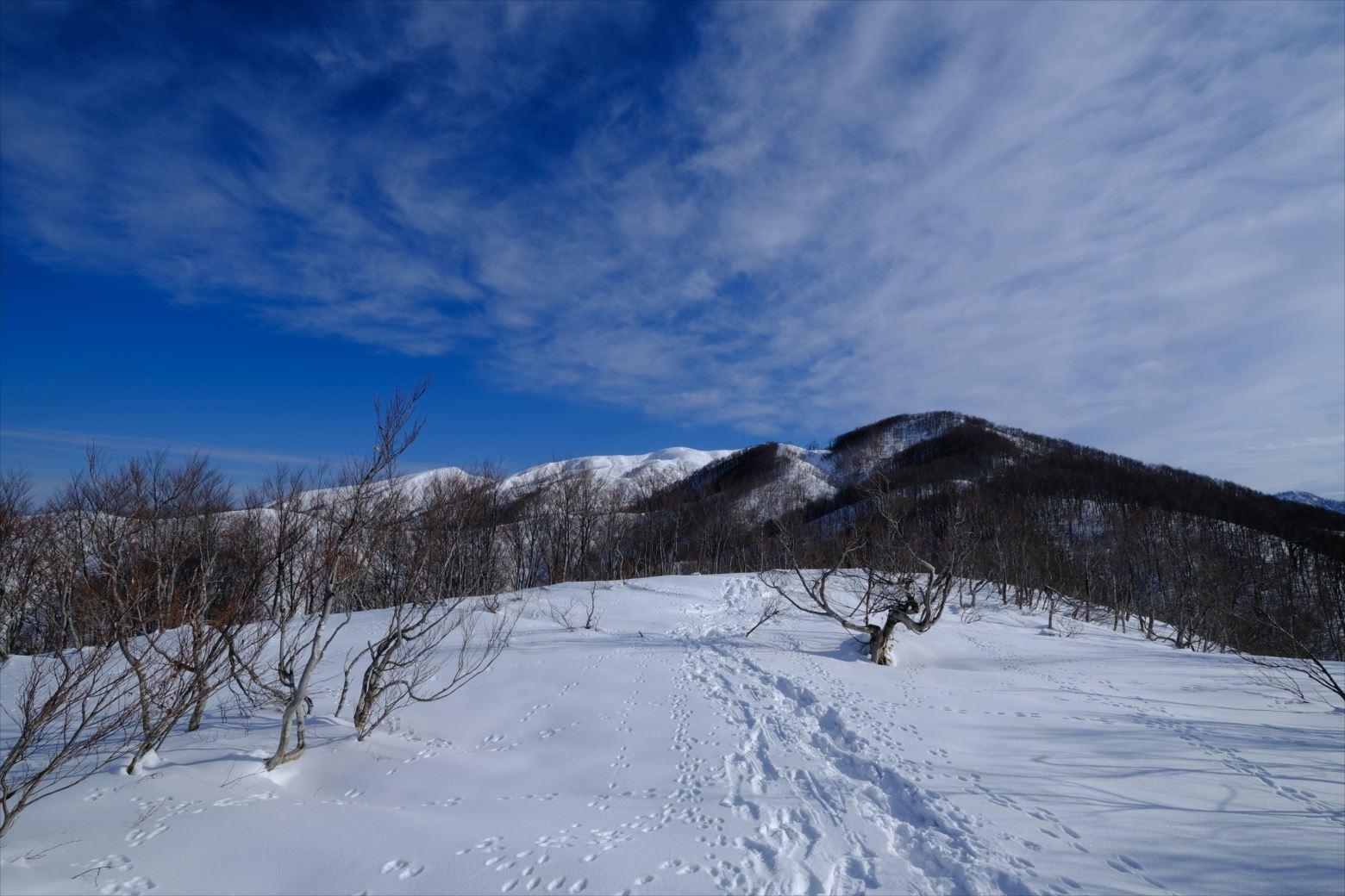 【厳冬期・雪山登山】守門岳 (18)