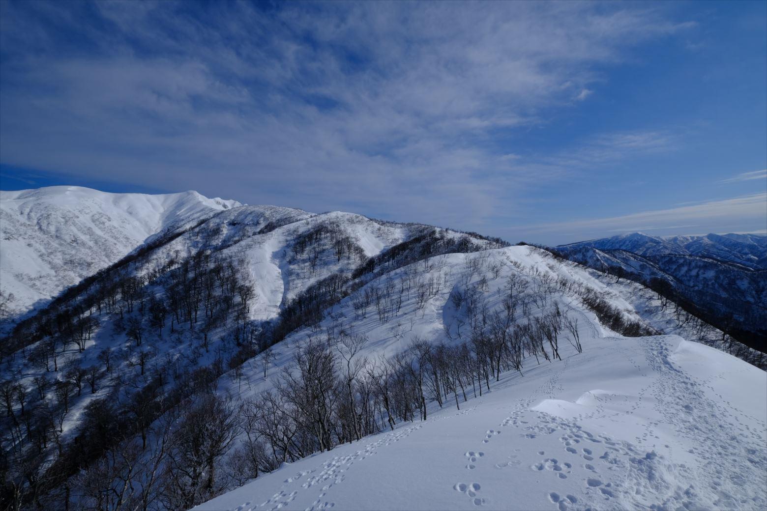 【厳冬期・雪山登山】守門岳 (24)