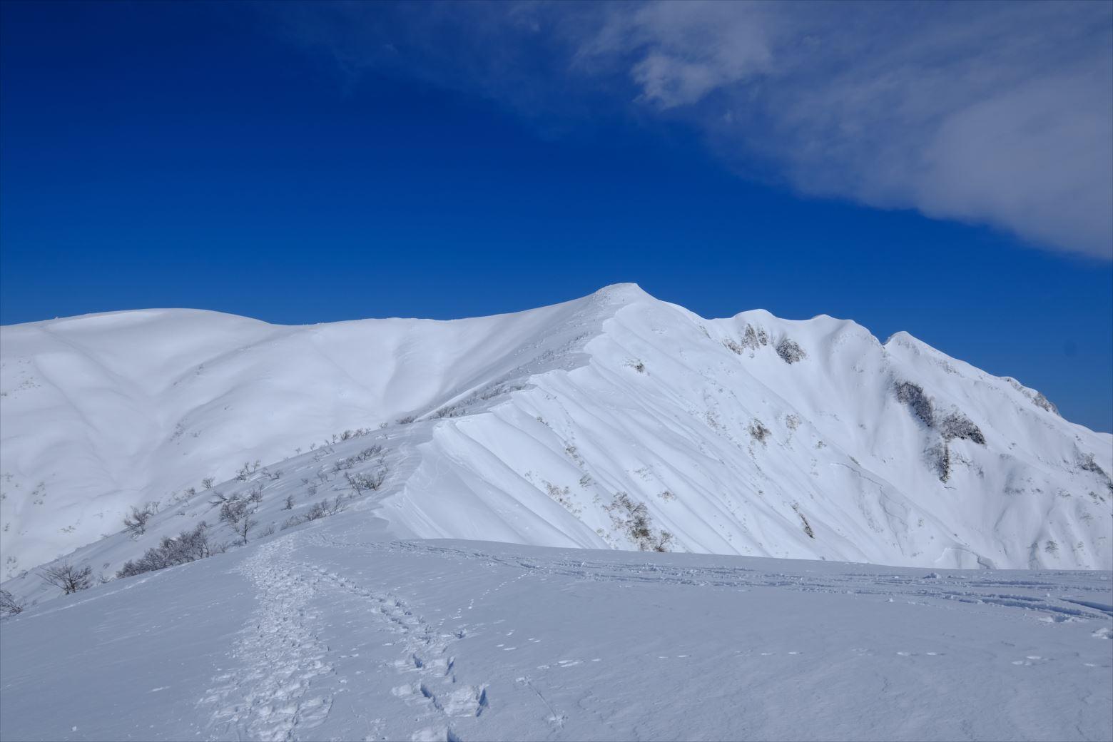 【厳冬期・雪山登山】守門岳 (36)