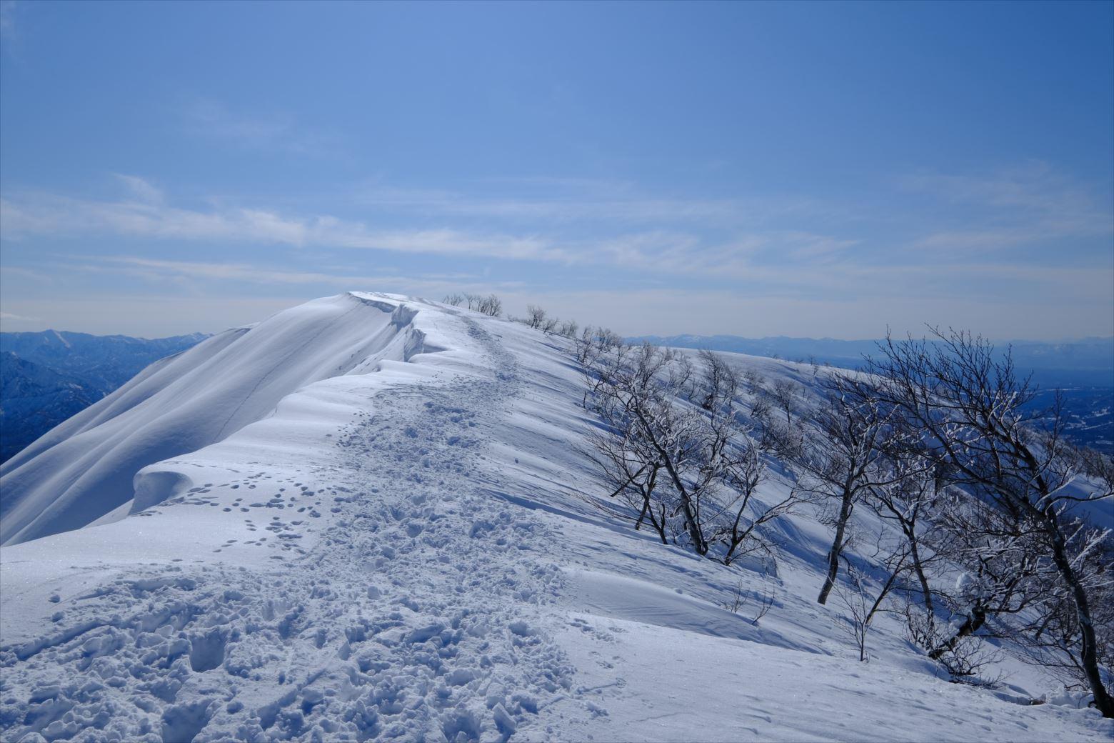 【厳冬期・雪山登山】守門岳 (49)