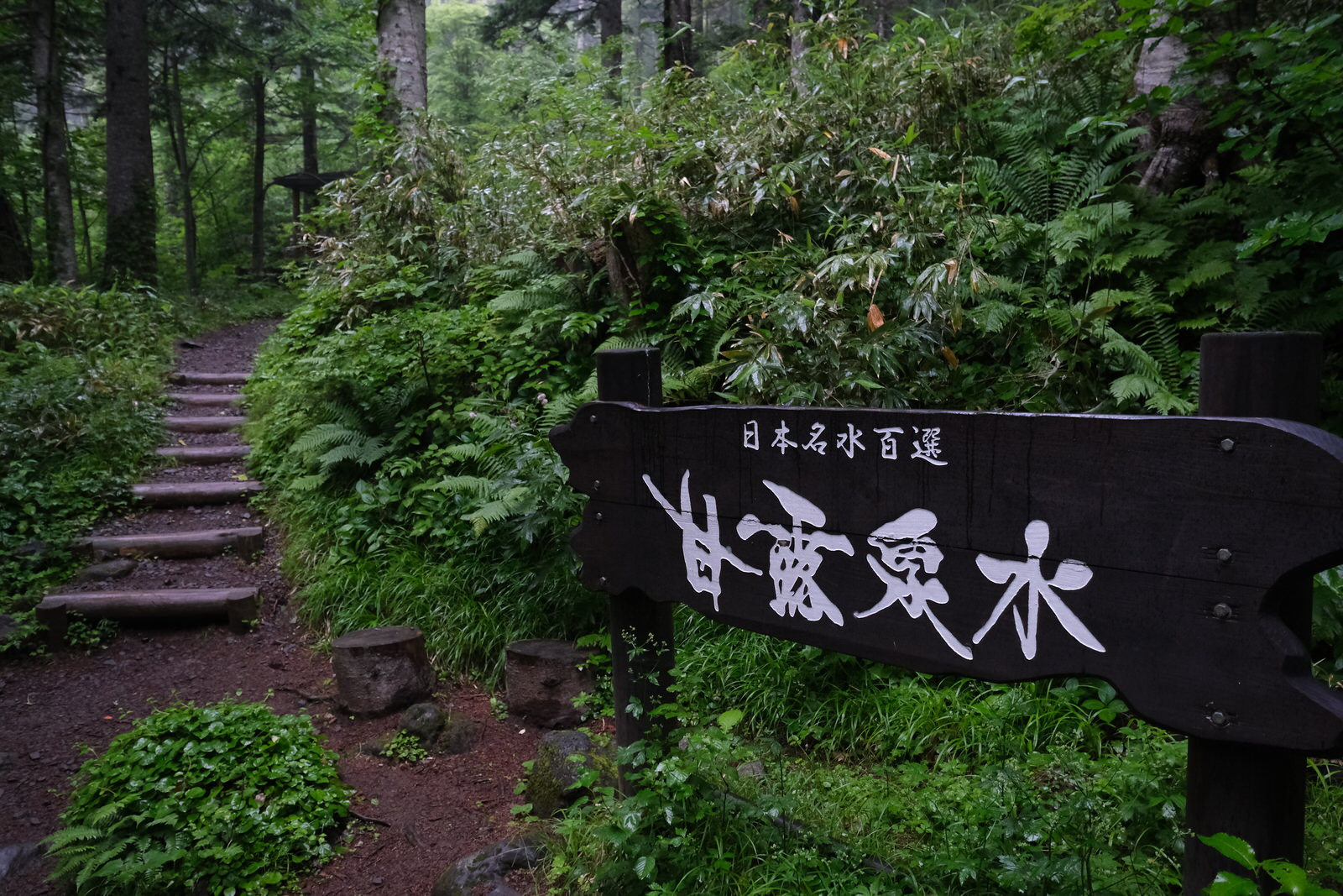 【夏山登山】利尻山 (23)