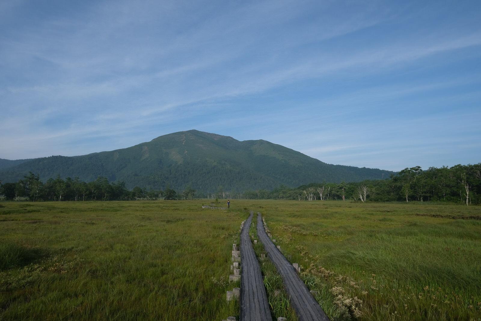 【夏山登山】至仏山、尾瀬ヶ原~高山植物天国~
