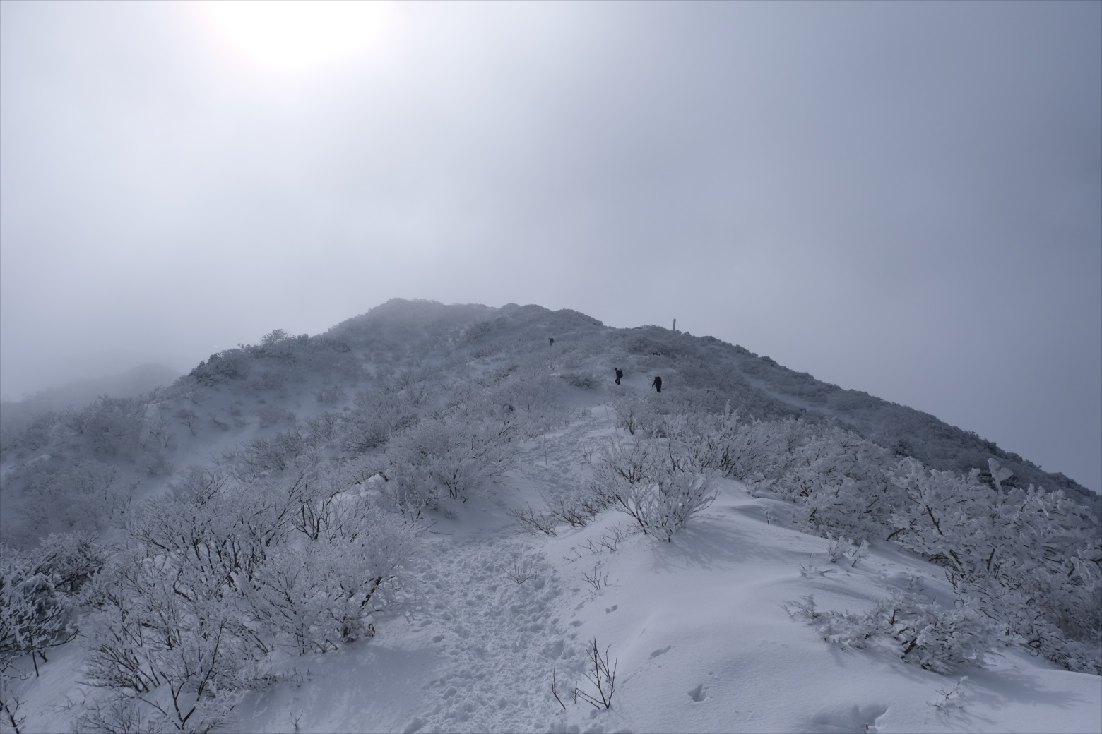 【残雪期・雪山登山】伯耆大山 (19)