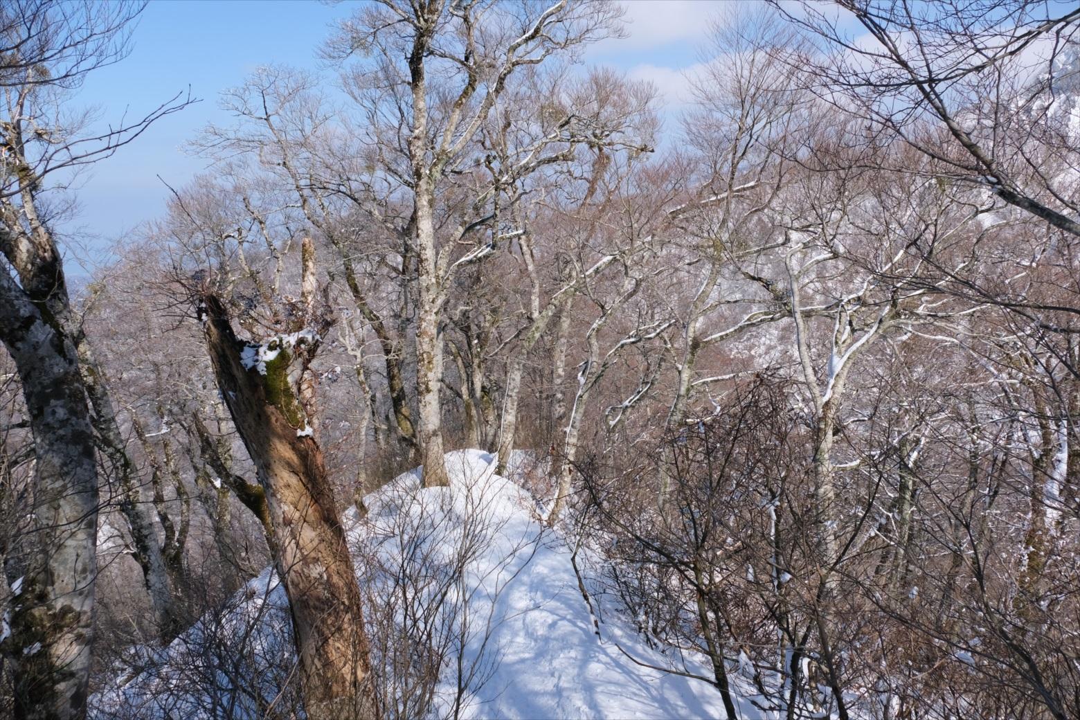 【残雪期・雪山登山】伯耆大山 (36)