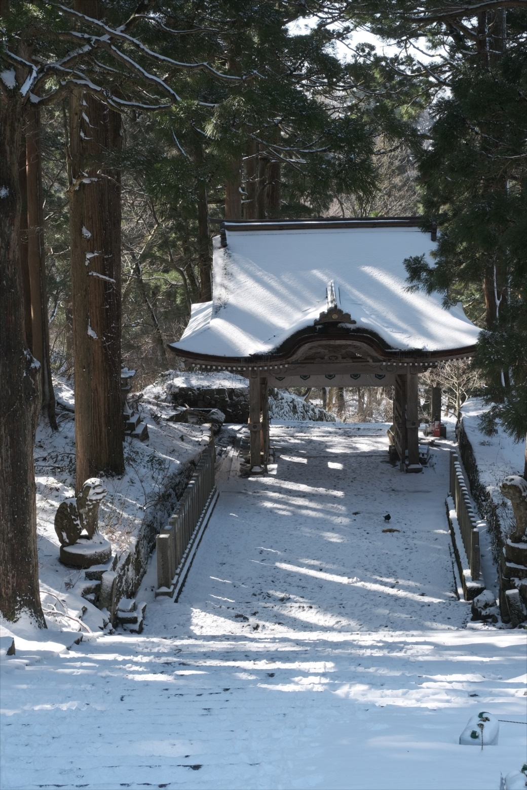 【残雪期・雪山登山】伯耆大山 (52)