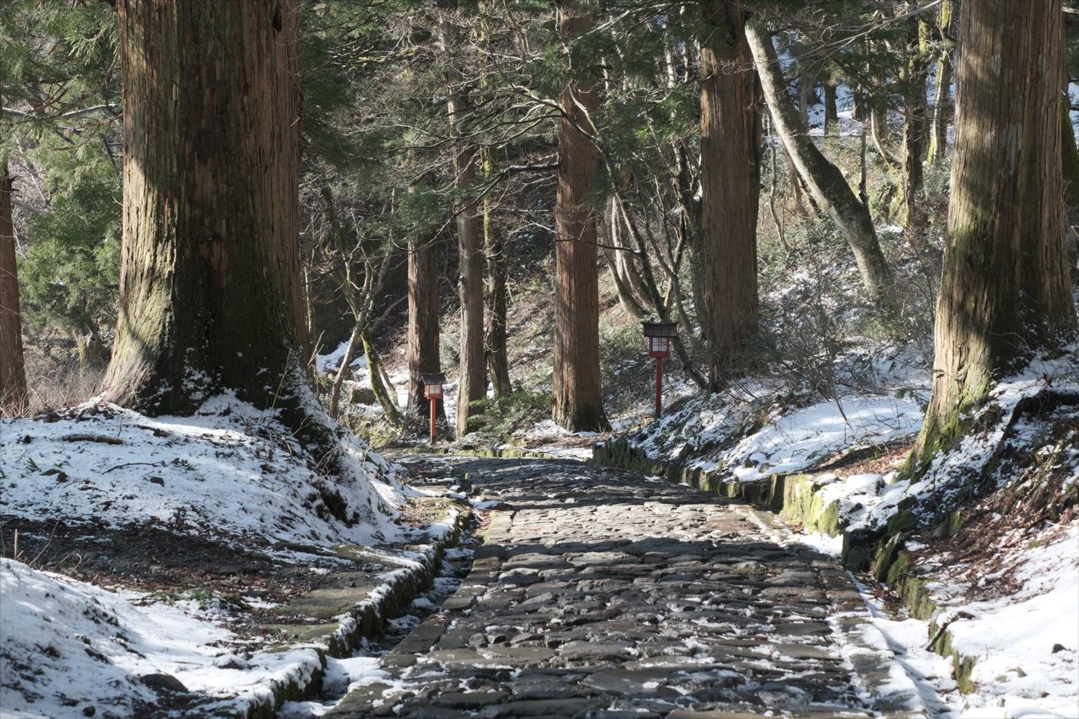 【残雪期・雪山登山】伯耆大山 (53)