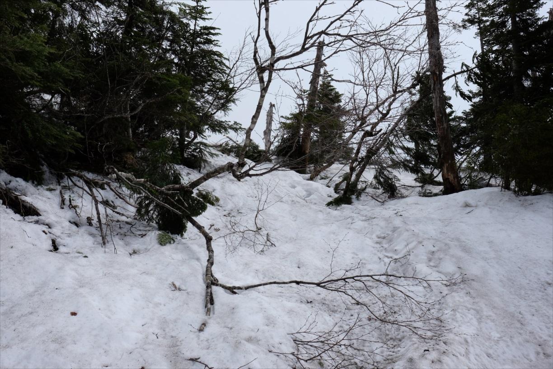 【残雪期・雪山登山】笠ヶ岳 (8)