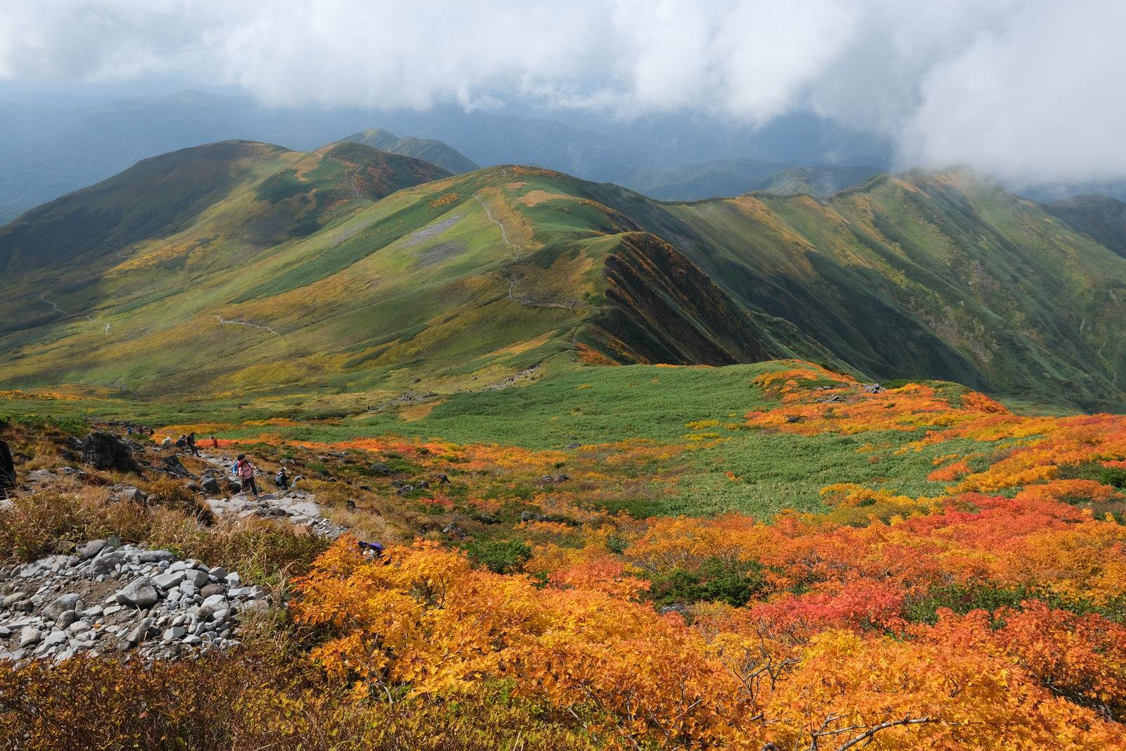 【紅葉登山】月山~一面の紅葉絨毯~