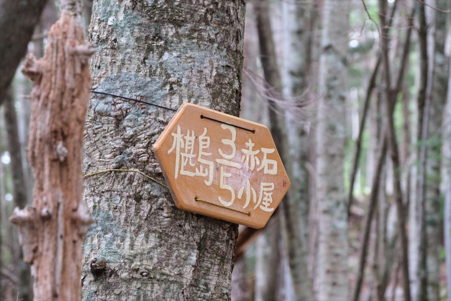 【秋山登山】赤石岳・荒川三山 (14)